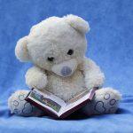 Libros, películas y series de ositos cariñosos